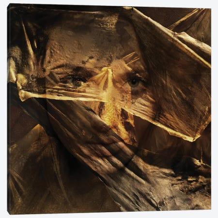 Golden Times 3-Piece Canvas #AMR25} by Tatiana Amrein Canvas Art Print