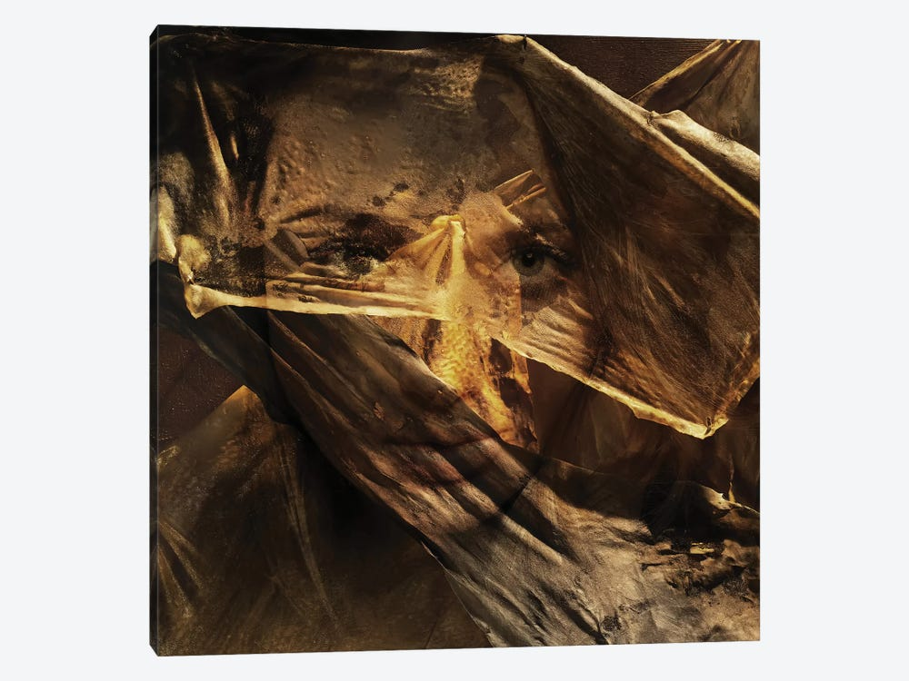Golden Times by Tatiana Amrein 1-piece Canvas Wall Art
