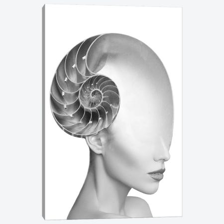 Shell Lady Canvas Print #AMR36} by Tatiana Amrein Canvas Art