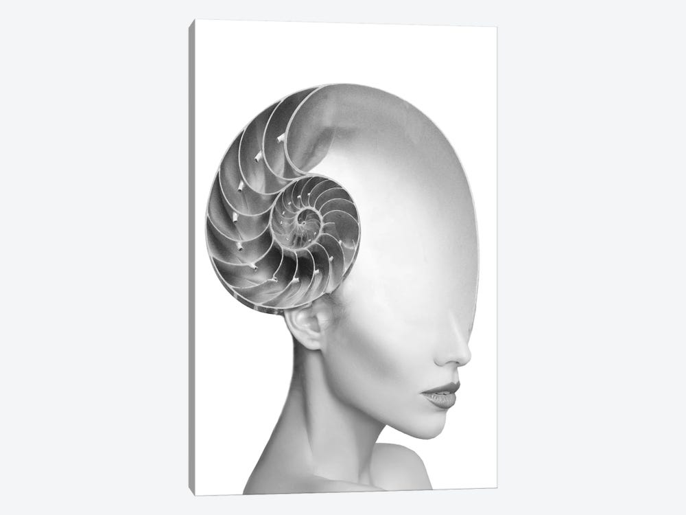 Shell Lady 1-piece Canvas Art