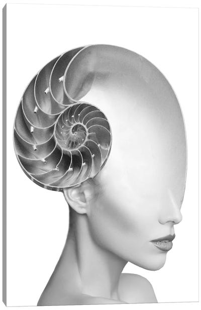 Shell Lady Canvas Art Print