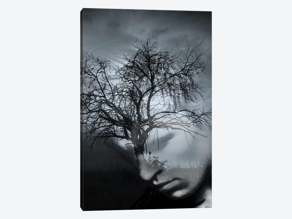 Tree Man II by Tatiana Amrein 1-piece Canvas Art Print