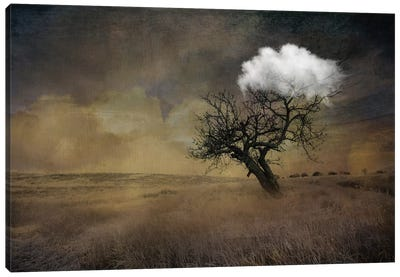 Tree Canvas Art Print