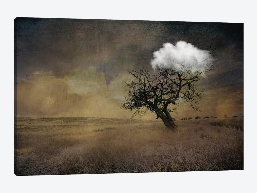 Tree by Tatiana Amrein 1-piece Art Print