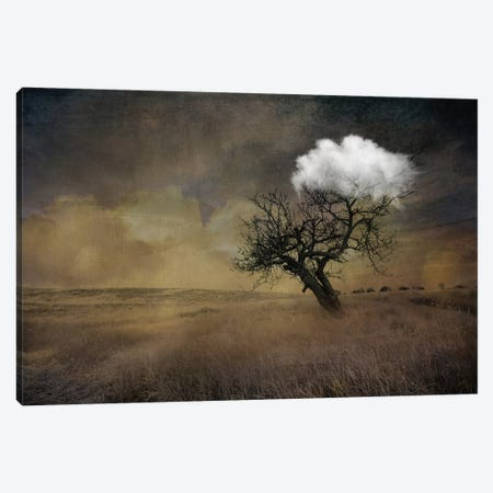 Tree Canvas Print #AMR59} by Tatiana Amrein Art Print