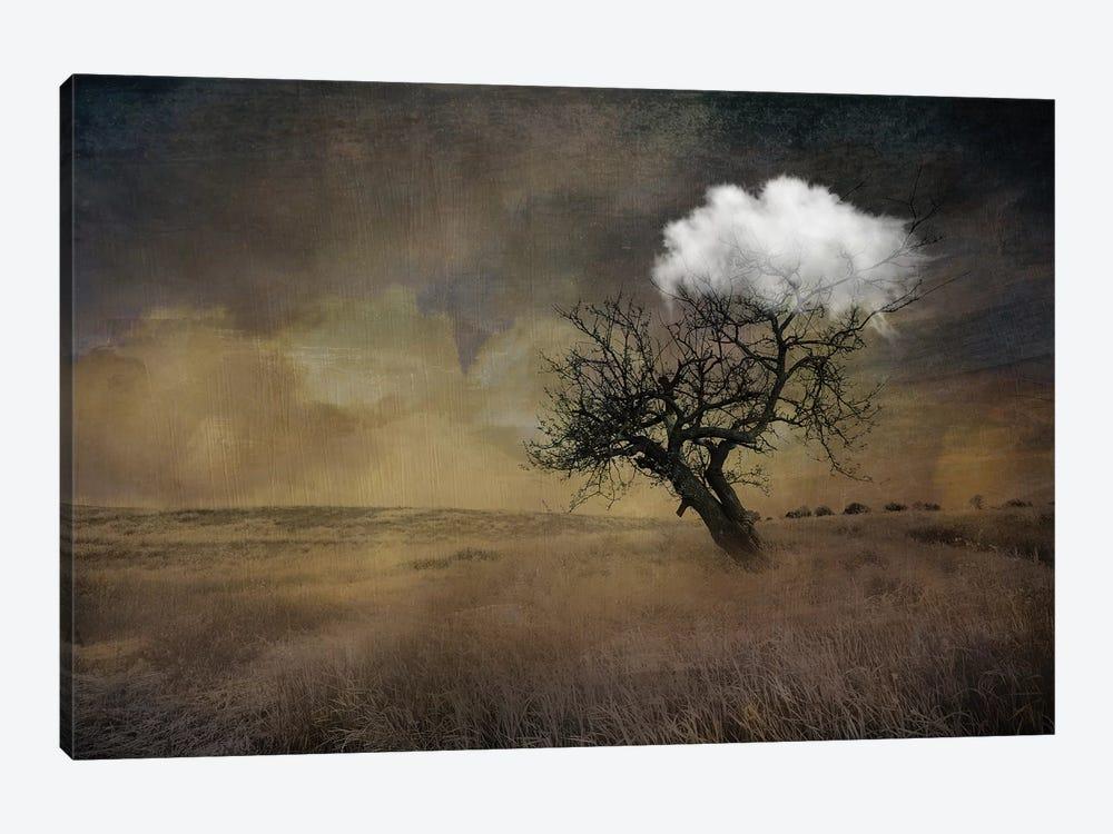 Tree by Tatiana Amrein 1-piece Art Print