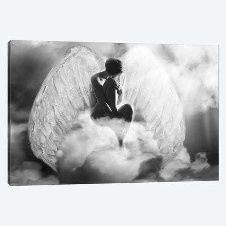 Angel Wings 3-Piece Canvas #AMR61} by Tatiana Amrein Canvas Artwork