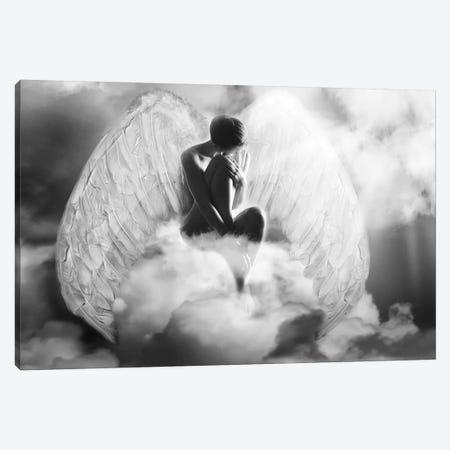 Angel Wings Canvas Print #AMR61} by Tatiana Amrein Canvas Artwork