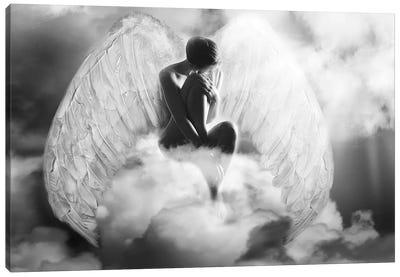 Angel Wings Canvas Art Print