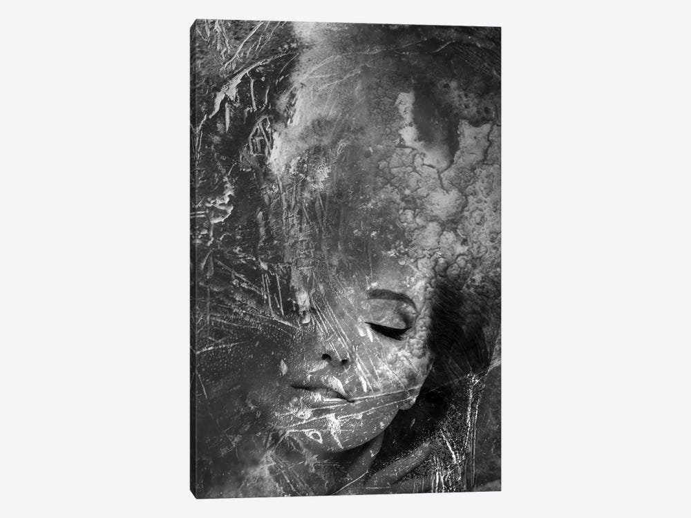 B&W I by Tatiana Amrein 1-piece Canvas Print