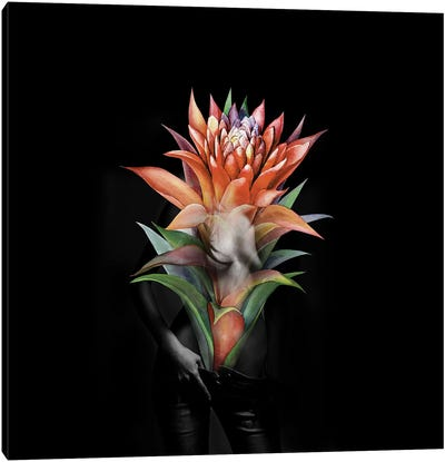 Guzmania Flower Canvas Art Print