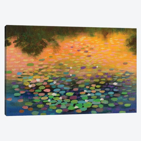 Water Lilies At Sunset II Canvas Print #AMT22} by Amita Dand Canvas Wall Art