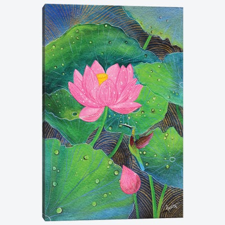 Pink Lotus And Humming Bird Canvas Print #AMT28} by Amita Dand Canvas Wall Art