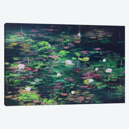 Black Abstract Water Lilies Pond Canvas Print #AMT39} by Amita Dand Canvas Print