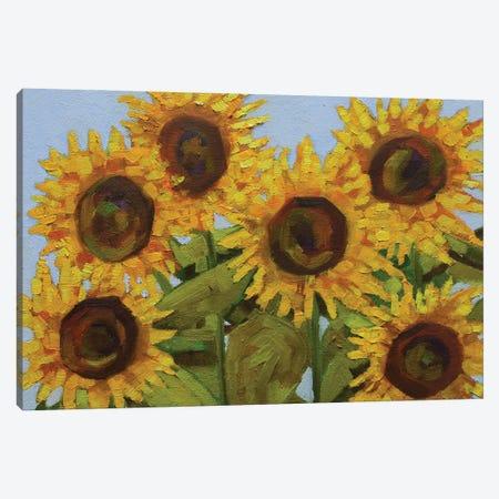 Sunlit Sunflowers Canvas Print #AMT45} by Amita Dand Canvas Art Print