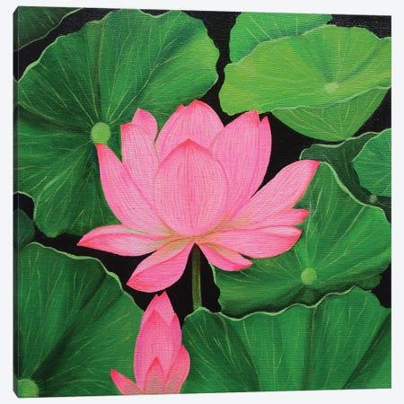 Pink Lotus Canvas Print #AMT50} by Amita Dand Canvas Print