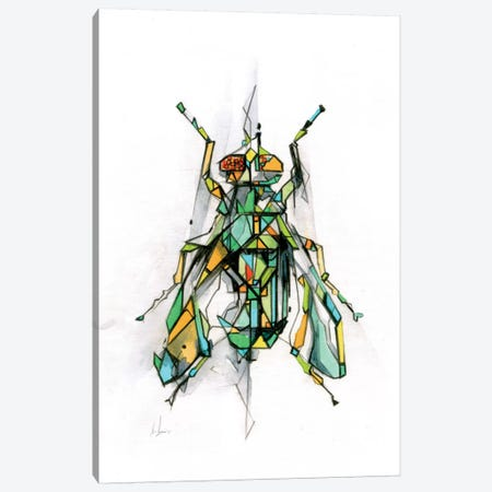 Fly Canvas Print #AMU12} by Alexis Marcou Canvas Art