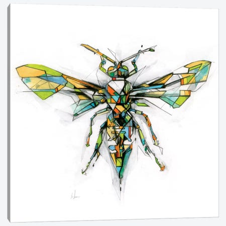 Hornet Canvas Print #AMU15} by Alexis Marcou Canvas Print