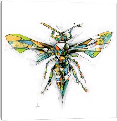 Hornet Canvas Print #AMU15