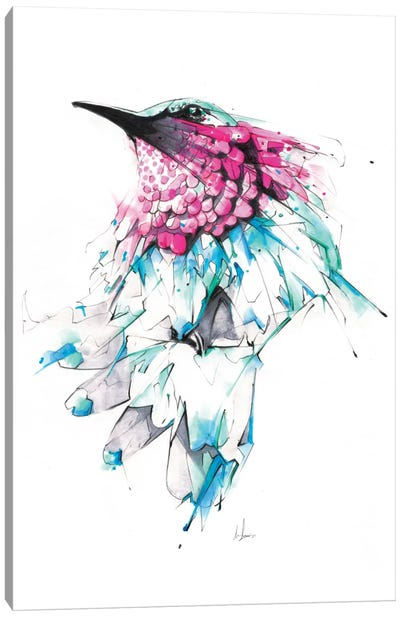 Hummingbird Canvas Print #AMU16