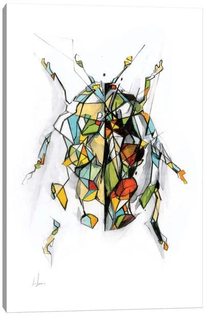 Ladybird Canvas Art Print