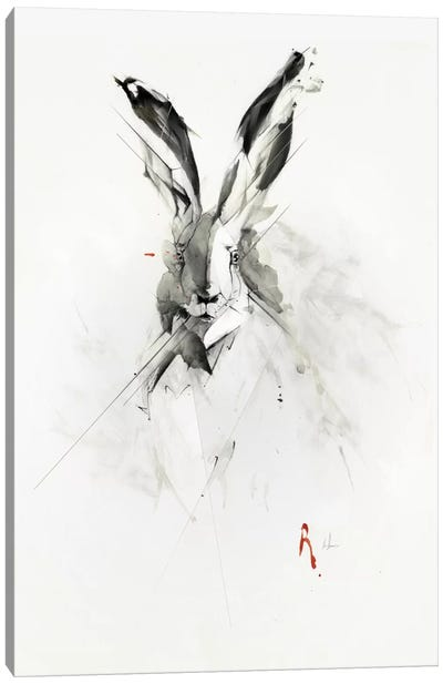 Mr. Rabbit Canvas Print #AMU21