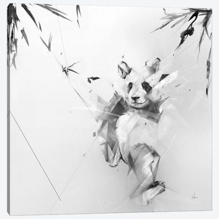 Panda Canvas Print #AMU23} by Alexis Marcou Canvas Art Print