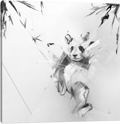 Panda Canvas Print #AMU23