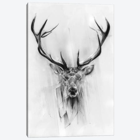 Red Deer Canvas Print #AMU24} by Alexis Marcou Canvas Art