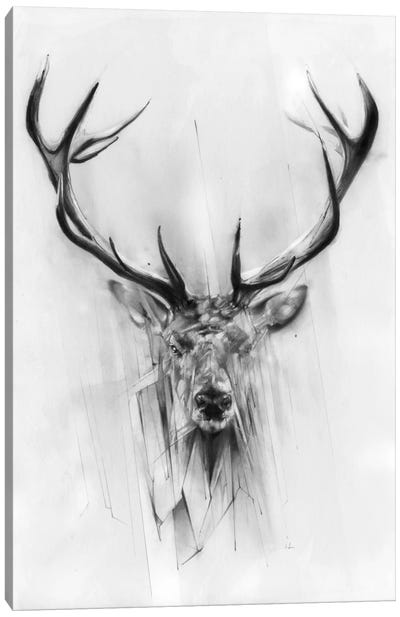 Red Deer Canvas Art Print