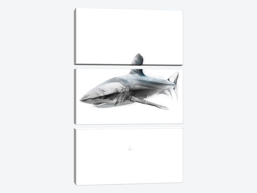 Shark I by Alexis Marcou 3-piece Canvas Art