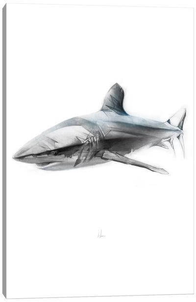 Shark I Canvas Print #AMU26