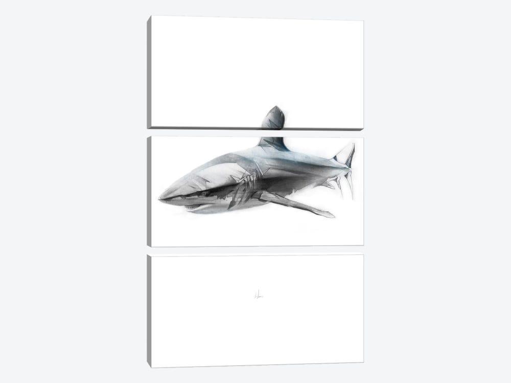 Shark I by Alexis Marcou 3-piece Canvas Art