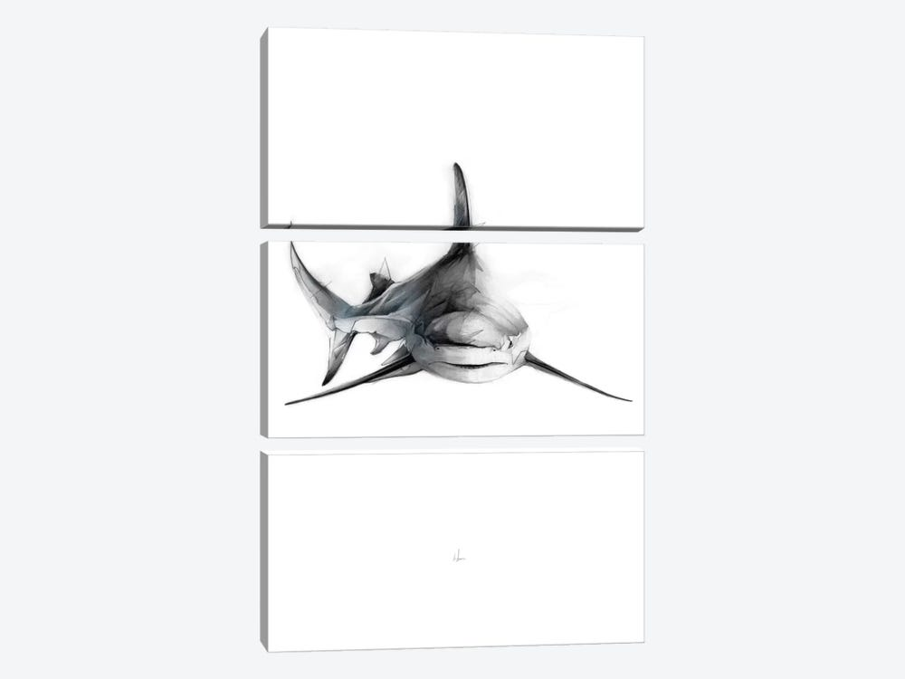 Shark II by Alexis Marcou 3-piece Art Print