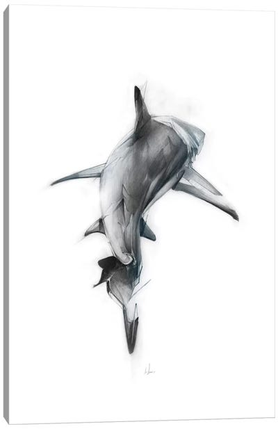 Shark III Canvas Art Print