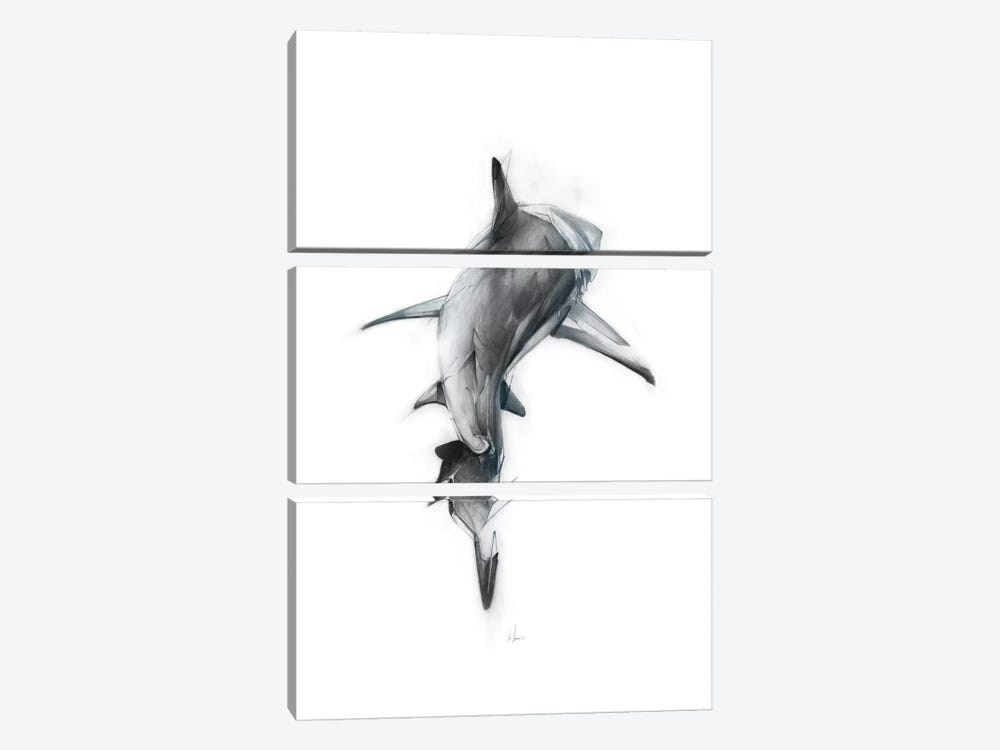 Shark III by Alexis Marcou 3-piece Canvas Art