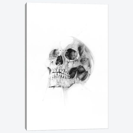 Skull LII Canvas Print #AMU29} by Alexis Marcou Canvas Print