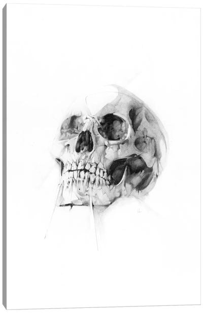 Skull LII Canvas Art Print