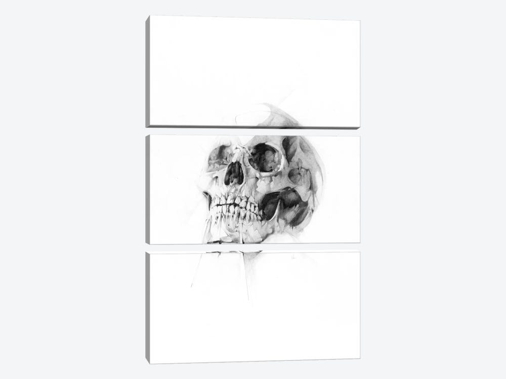 Skull LII by Alexis Marcou 3-piece Canvas Art Print