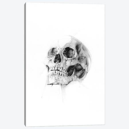 Skull LII Canvas Print #AMU29} by Alexis Marcou Canvas Print