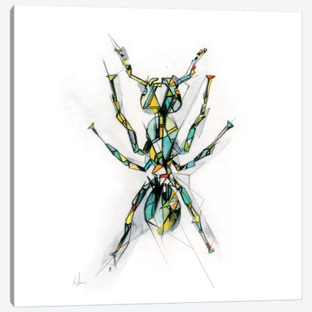 Ant Canvas Print #AMU2} by Alexis Marcou Canvas Art Print