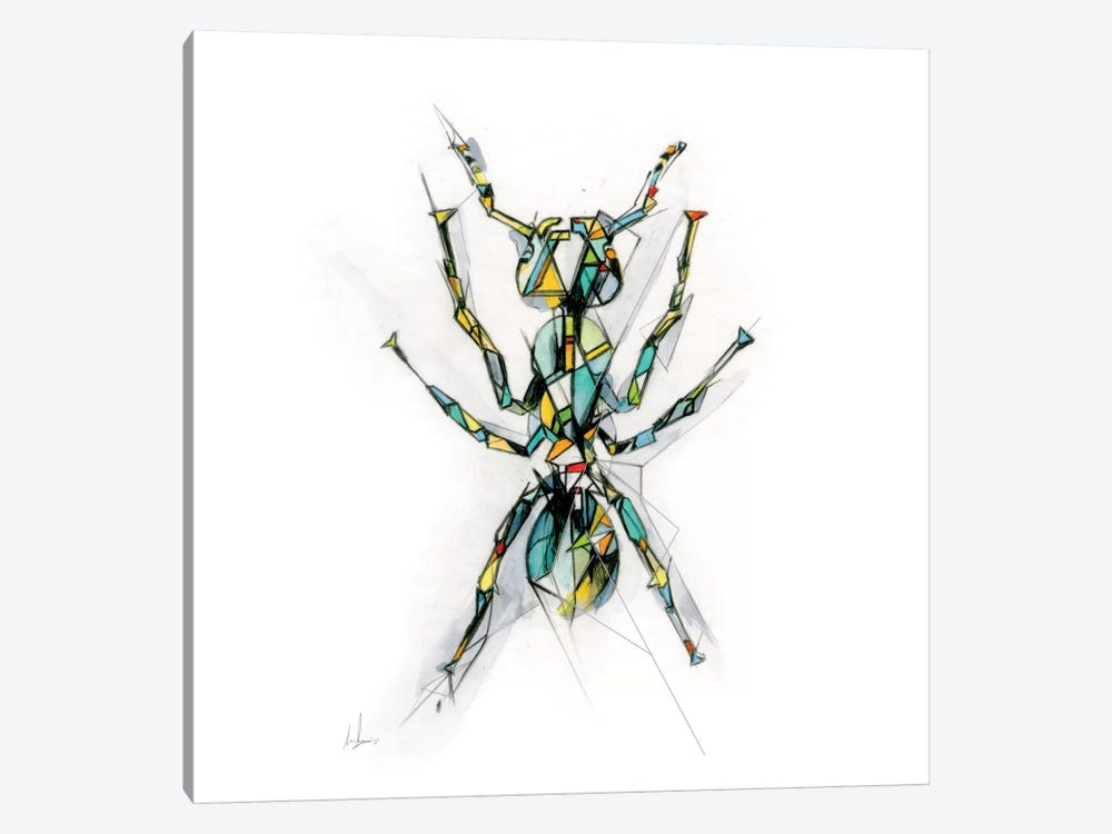 Ant by Alexis Marcou 1-piece Canvas Art Print