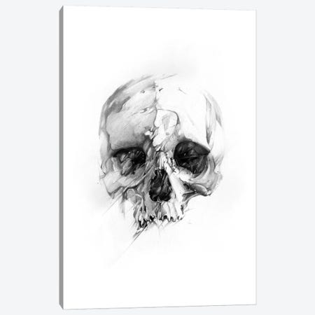Skull XLVI Canvas Print #AMU30} by Alexis Marcou Canvas Wall Art