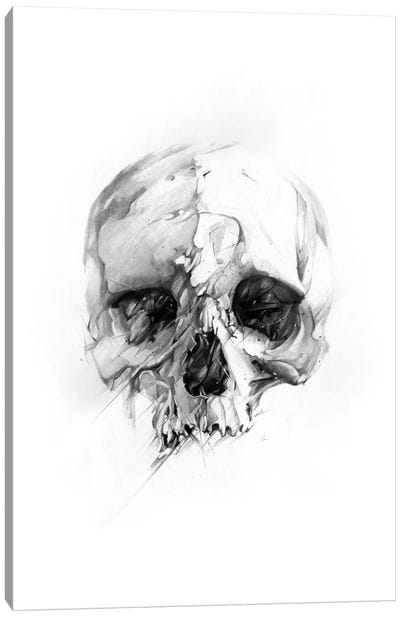 Skull XLVI Canvas Art Print