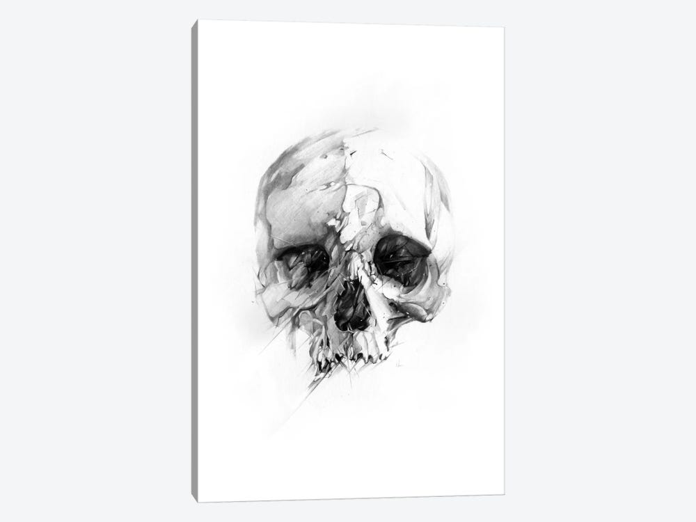 Skull XLVI by Alexis Marcou 1-piece Canvas Print