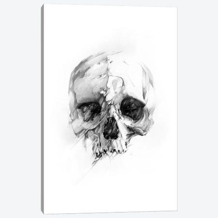 Skull XLVI Canvas Print #AMU30} by Alexis Marcou Canvas Wall Art
