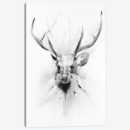 Stag Canvas Print #AMU34} by Alexis Marcou Canvas Print