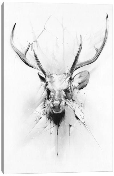 Stag Canvas Print #AMU34
