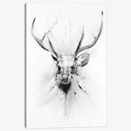 Stag Canvas Print #AMU34} by Alexis Marcou Canvas Print