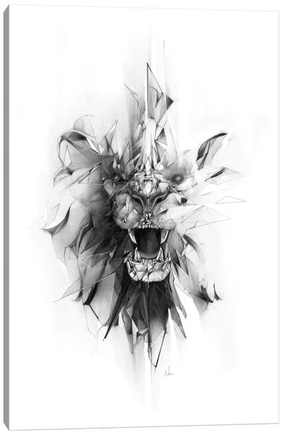 Stone Lion Canvas Print #AMU35